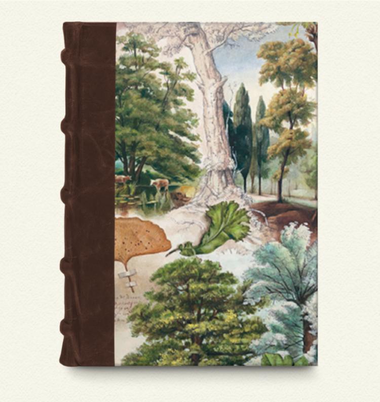 Cuaderno con lomo de piel 15x22