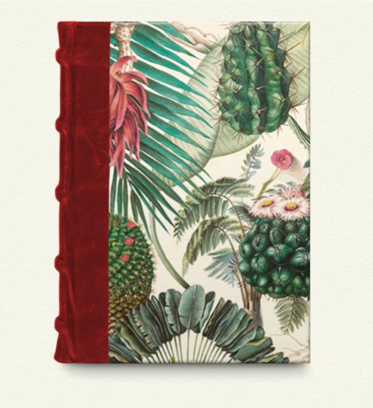 Cuaderno con lomo de piel 9x14 Cactus