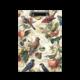 Portapapeles A4 pájaros y flores